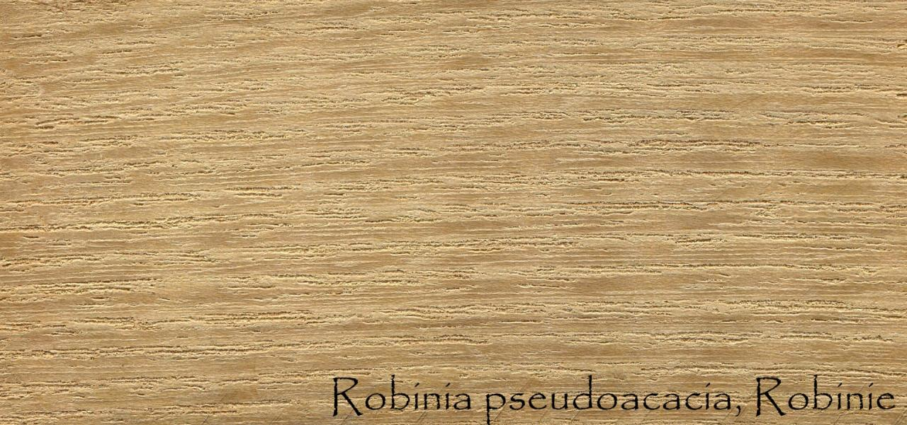 Parquet di Acacia, o Robinia - Showroom pavimenti a Vicenza ...