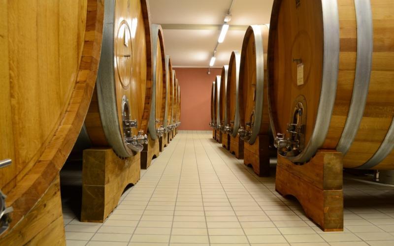 Piastrelle per cantina 28 images pavimento per cantina vinicola