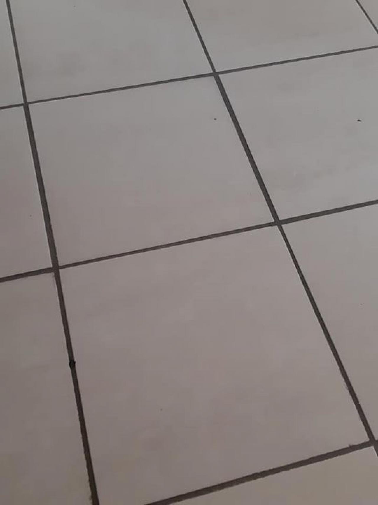 Colore Fughe Piastrelle Beige larghezza delle fughe non regolare: causato da piastrelle o