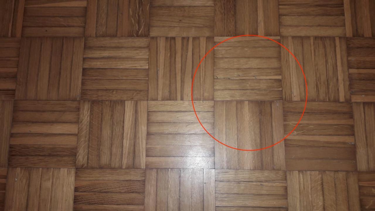 Insetti Bianchi Sul Parquet pavimenti in legno e tarli | fratelli pellizzari