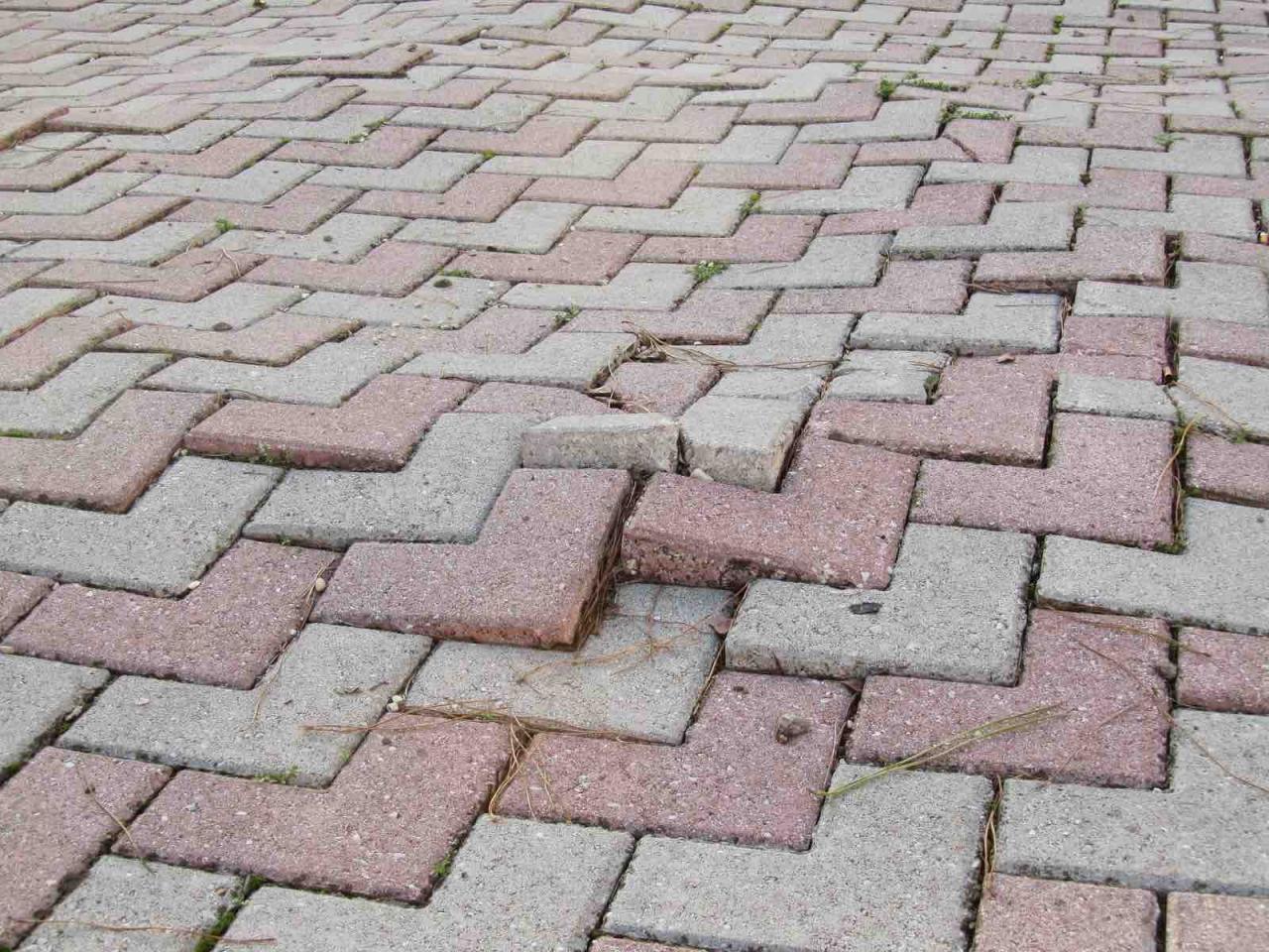 Realizzare Prato Su Cemento posa degli autobloccanti | fratelli pellizzari