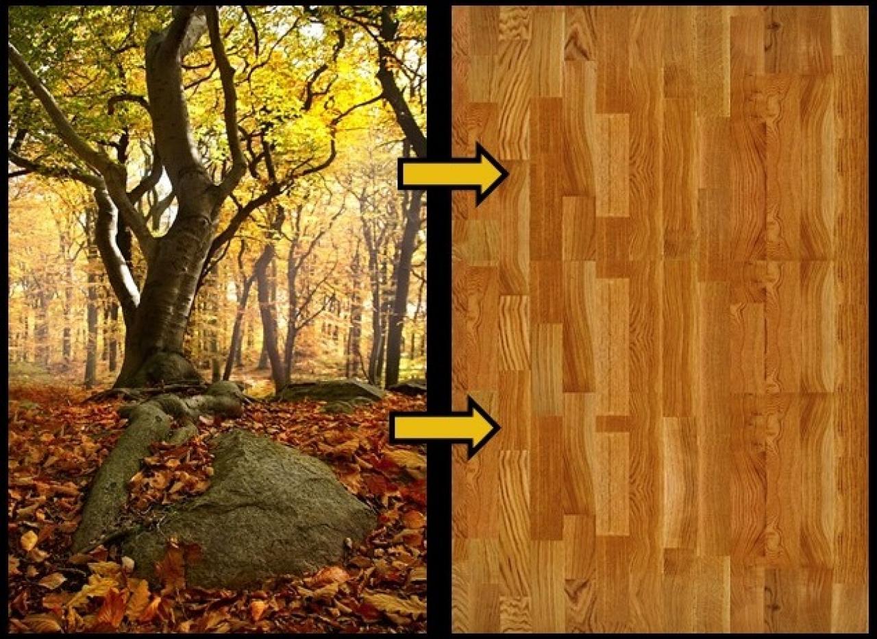 Parquet In Legno Duro parquet: quale legno utilizzare? | fratelli pellizzari