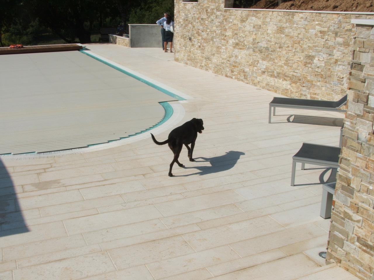 Piscina pavimenti e rivestimenti realizzazione a lonigo for Piastrelle per interno piscina